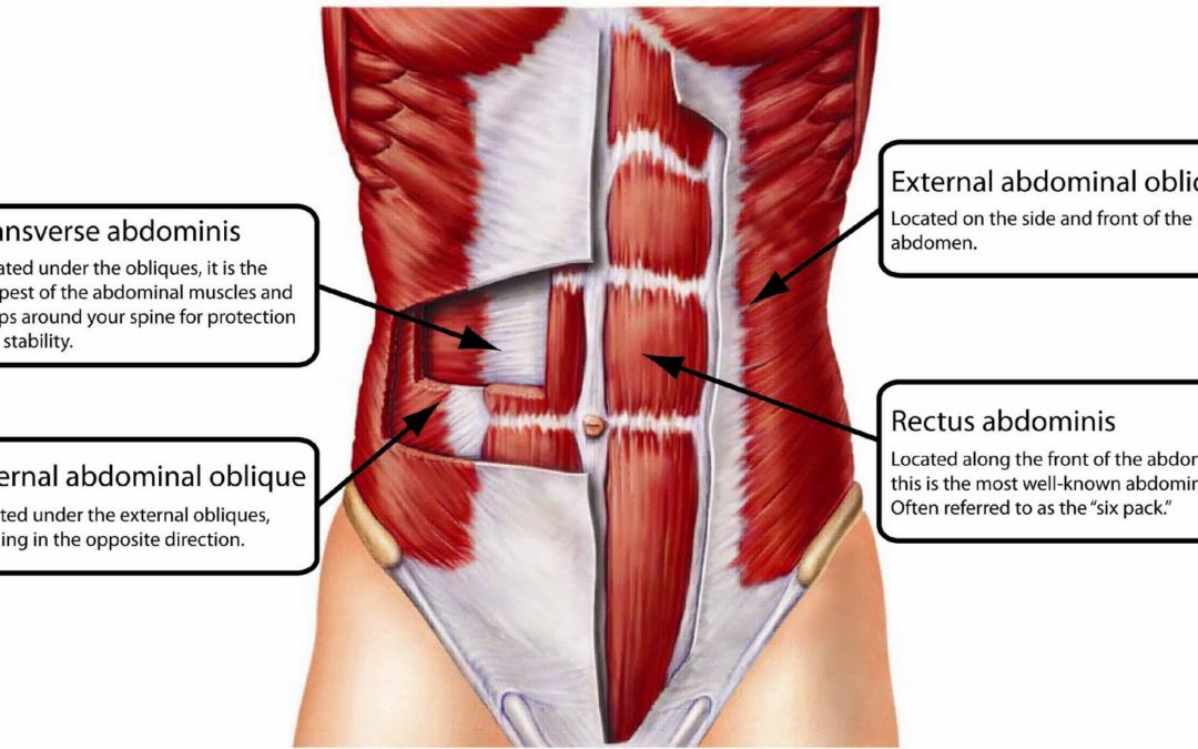 Learn to Use Your Abdominal Muscles to Protect Your Spine
