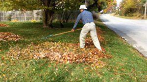 Picture of using good body mechanics when raking.
